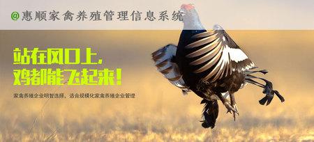 惠顺家禽养殖管理系统