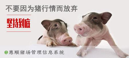 惠顺猪场管理系统