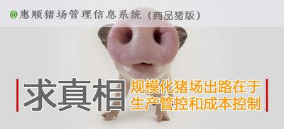 """""""惠顺商品猪场管理信息系统"""""""