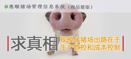 惠顺商品猪场管理系统